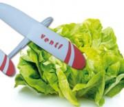 Schichtsalat – Venti Wurfgleiter für Experimentierfreudige