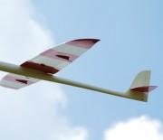 Falcon F3B von Staufenbiel