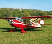 E-flite Taylorcraft 450 von Horizon Hobby
